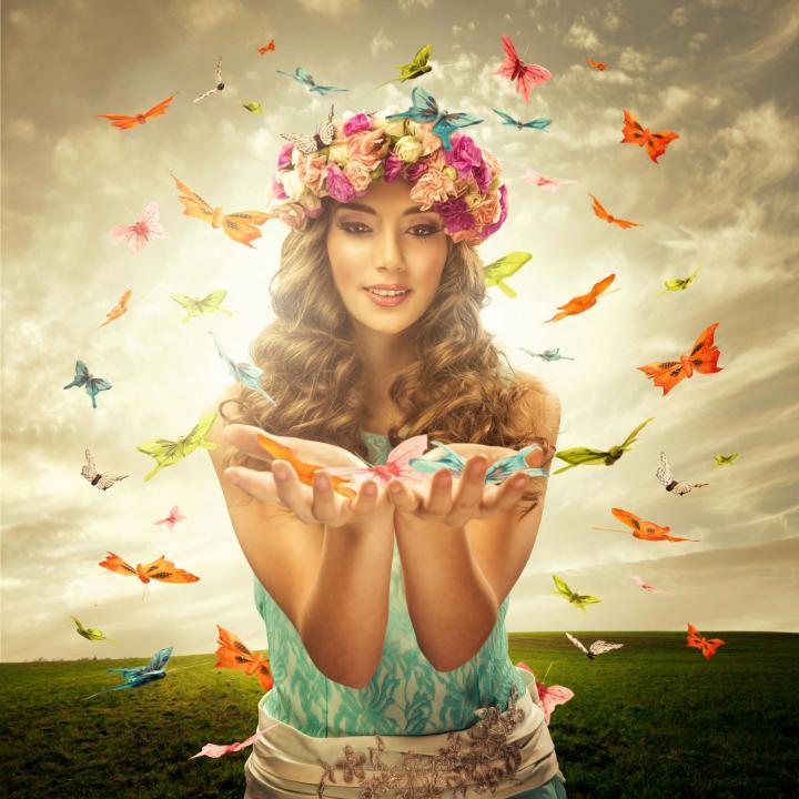 viedanse envolée de papillons pour du bonheur